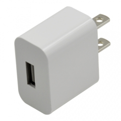 UL/CE Certified Compact 2.4A Travel Wall Charger for iOS & Android Devices